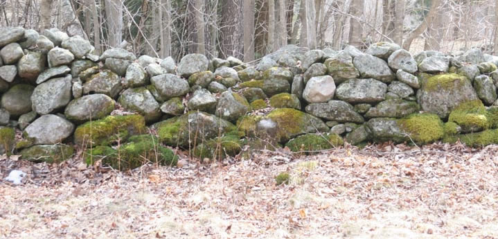 New England Stone Wall Construction Friday April 8 2016